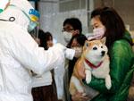 Mulher e cachorro passaram por detector de radiação nuclear na cidade de Koryama, na província de Fukushima, a 60 km da usina nuclear afetada pelo terremoto seguido tsunami, 16 de março