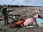 Soldados japoneses recolhem destroços na cidade de Natori