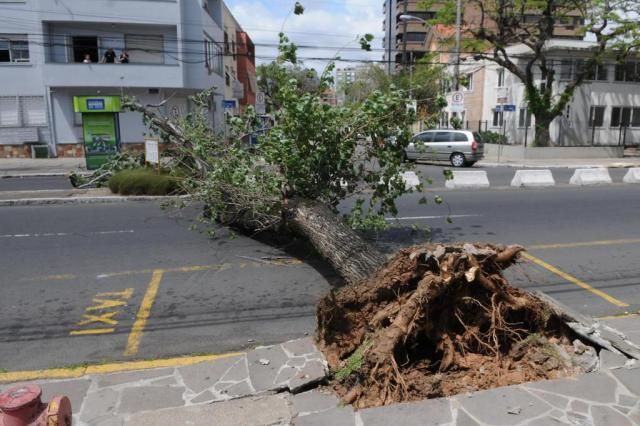 Trânsito é liberado em trecho da Avenida José de Alencar na Capital Arivaldo Chaves/Agencia RBS