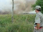 De acordo com informações iniciais, o fogo pode ter sido provocado na queimada de lixo ou preparação de comida por parte de pescadores