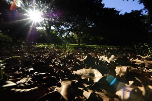 Outono será marcado por intensa variação climática ao longo dos dias Ronaldo Bernardi/Agência RBS