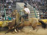 Prova começou às 9h de domingo (22), no Parque de Exposições Assis Brasil, em Esteio