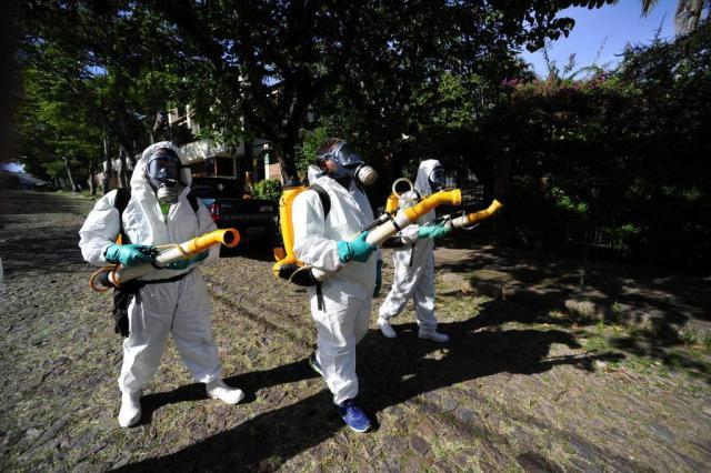 Secretaria da Saúde monta operação para evitar contágio da dengue na zona sul da Capital Ronaldo Bernardi/Agência RBS