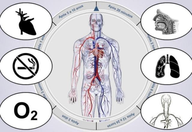 Entenda o que acontece no seu corpo quando você para de fumar reprodução/Reprodução