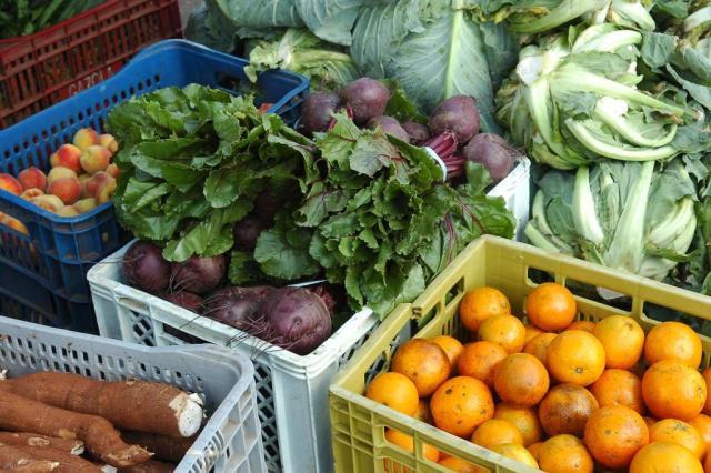 Nutrólogo desvenda alguns conceitos recorrentes quando o tema é alimentação saudável Roni Rigon/Agencia RBS