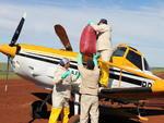 O avião foi carregado com 40 quilos de pinhão para cada hectare de plantio