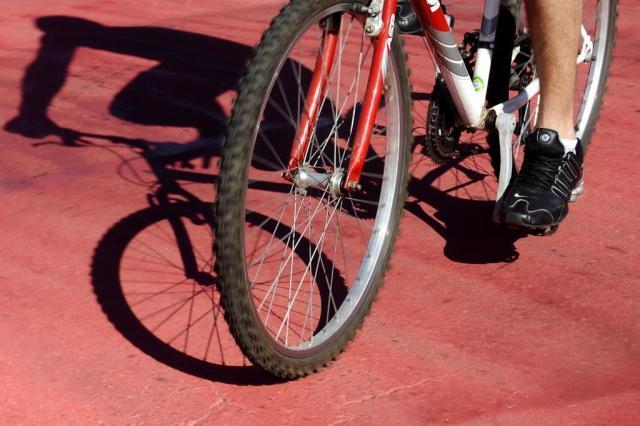 Escreva sobre a importância do meio ambiente para o seu bem-estar e concorra a uma bicicleta dobrável Daniela Xu/Agencia RBS