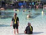 Na área do Grand Reef, dentro do Discovery Cove, é possível usar o snorkel e nadar junto a peixes e arraias