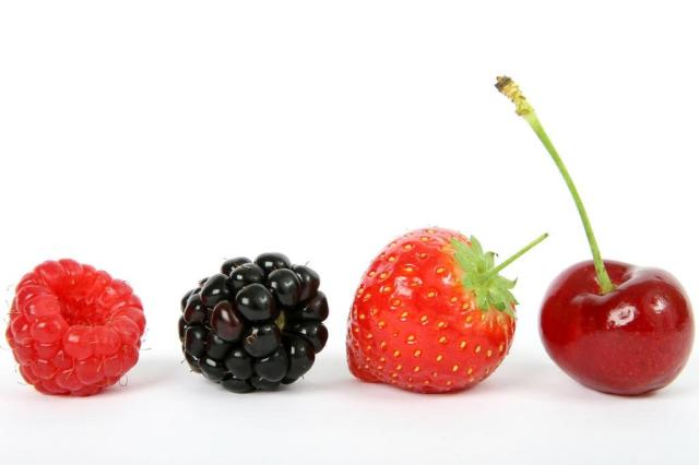 Nutricionista indica 20 alimentos que não podem faltar na dieta stock.xchng/Divulgação