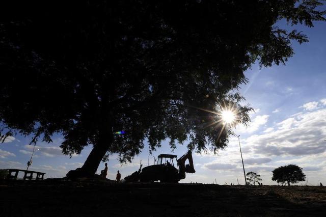 Justiça decidirá entre duplicação da Beira-Rio ou preservação de árvores Ricardo Duarte/Agencia RBS