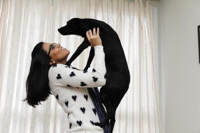 Cães tornam-se fator de socialização entre seus donos Ronaldo Bernardi/Agencia RBS