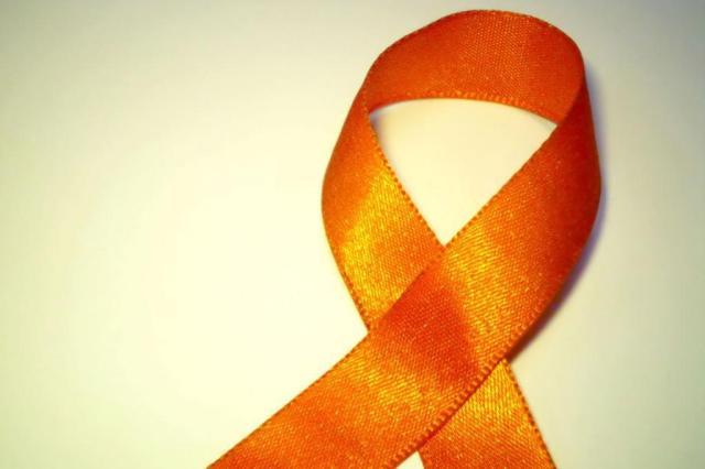 HIV foi expulso de células pela primeira vez, revela evento que receberia cientistas do voo MH17 Felipe Wiecheteck/stock.xchng