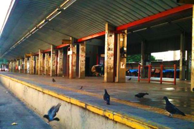 Carolina Bahia: Planalto monitora greve em Porto Alegre Tanira Lebedeff/