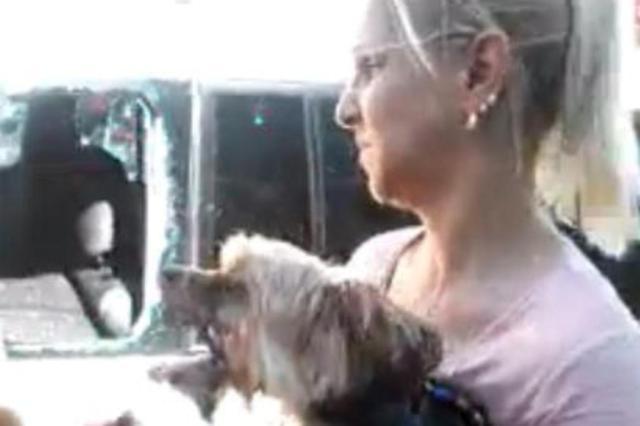 Comerciante de Pelotas quebra vidro de carro para resgatar cachorro Paula Nunes/Arquivo Pessoal/Reprodução