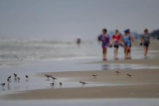 Em manhã de tempo feio no litoral, só surfistas encaram a praia  Bruno Alencastro/Agencia RBS