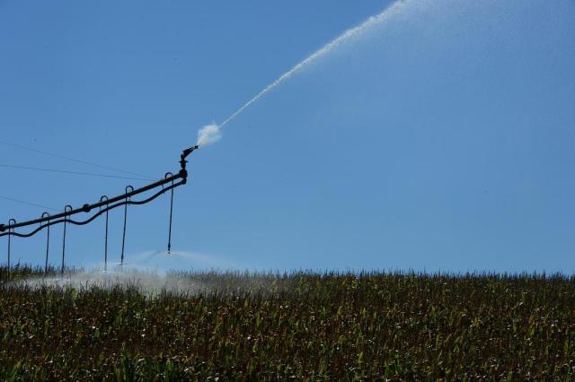 Falta de chuva no início deste ano deverá estimular venda de sistemas de irrigação Tadeu Vilani/Agencia RBS