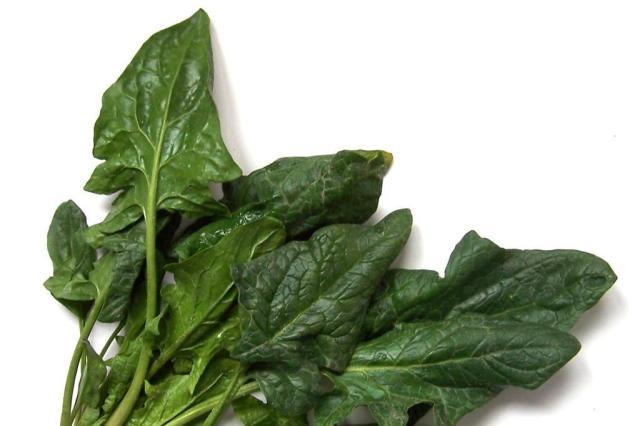 Pesquisa descobre extrato de espinafre que reduz sensação de fome Stock.Xchng/Divulgação
