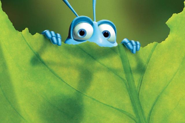 Troca de Mata Atlântica por eucalipto reduz em cinco vezes diversidade de formigas, aponta estudo Pixar/Divulgação