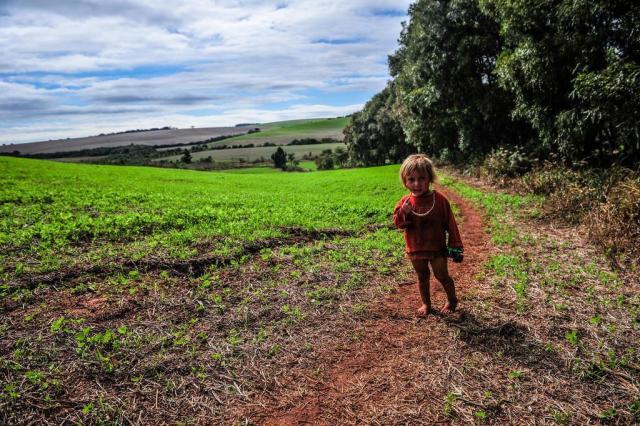 Por que o Brasil não consegue determinar o lugar do indígena na sociedade Carlos Macedo/Agencia RBS