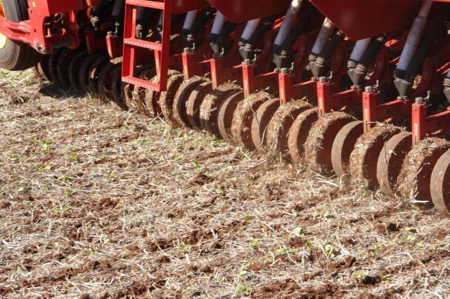 Plantio de trigo começa com preço mínimo em discussão Roberto Marques/Divulgação/Coopatrigo