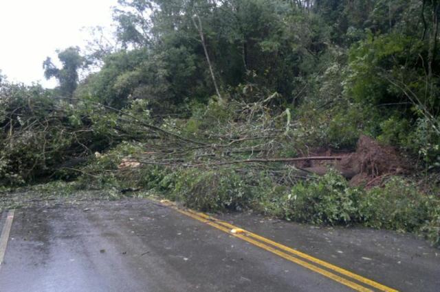 Rodovias estão com trechos interditados em Santa Catarina por causa das chuvas Daisy Trombetta/Agência RBS