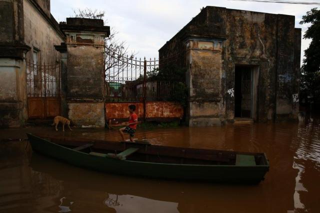 Animais são abandonados em casas alagadas em Itaqui, na Fronteira Oeste Tadeu Vilani/Agencia RBS