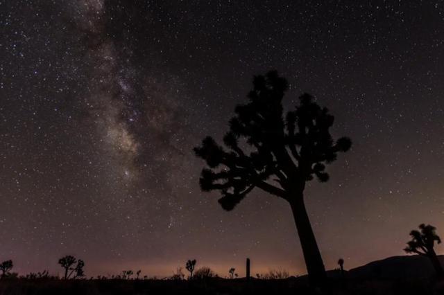Chuva de meteoros será visível na noite desta segunda-feira divulgação/divulgação