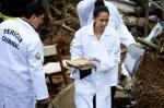 IML averigua morte de Campos e outros seis em Santos