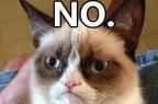 O meme que virou filme: Grumpy Cat vai estrelar produção para a TV (Reprodução/Lifetime)
