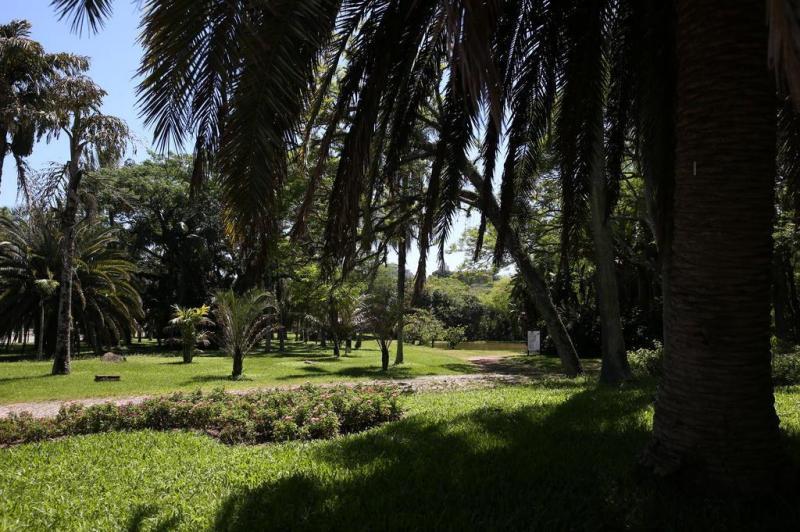 fotos jardim botanico porto alegre : fotos jardim botanico porto alegre:FOTOS: Jardim Botânico é opção de passeio para quem procura