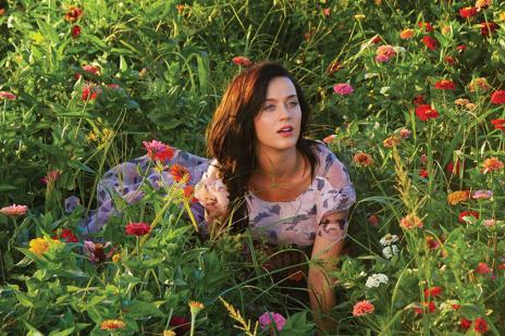 Quiz: Qual música de Katy Perry você seria? (Divulgação/)