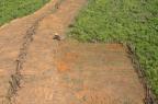 Reduzir desmatamento não é suficiente para garantir funções climáticas da Amazônia (Divulgação/Ver Descrição)