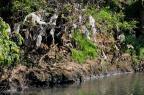 No Rio Grande do Sul, o que preocupa é a qualidade da água Bruno Alencastro/Agencia RBS