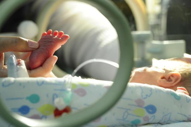 Após sucesso, blog com dicas para pais de prematuros vira ONG Porthus Junior/Agencia RBS