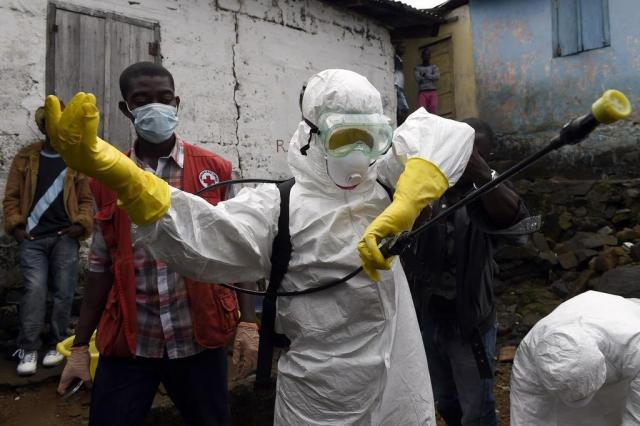 Morcego deu início ao surto de ebola, aponta estudo PASCAL GUYOT/AFP/AFP