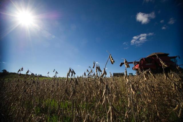 Agropecuária deverá ajudar economia gaúcha a voltar a crescer em 2015 Diogo Sallaberry/Agencia RBS