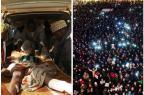 Ataques terroristas na França e na Nigéria tiveram reações opostas Montagem com fotos de Aminu Abubakar e Eric Cabanis/AFP