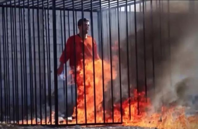 Piloto jordaniano é queimado vivo pelo Estado Islâmico