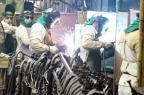 Pesquisa do IBGE indica tendência de redução do emprego industrial Agência Brasil/ABR