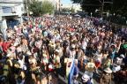 No Carnaval de Rua da Cidade Baixa, moradores compõem o bloco dos descontentes Fernando Gomes/Agencia RBS