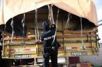 Polícia Civil prende cinco suspeitos de tráfico em Camaquã
