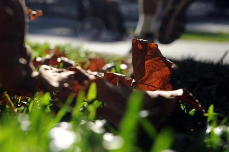 Massa polar derruba a temperatura neste fim de semana (Felipe Nyland/Agencia RBS)
