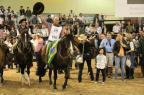 Cavalo crioulo de Júlio de Castilhos é campeão do Mercosul Thiana Scherer Peixoto/Arquivo pessoal