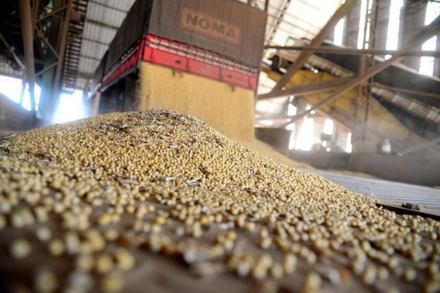 Suspenso decreto que previa taxação das exportações de milho e soja em Goiás Diogo Zanatta/Especial