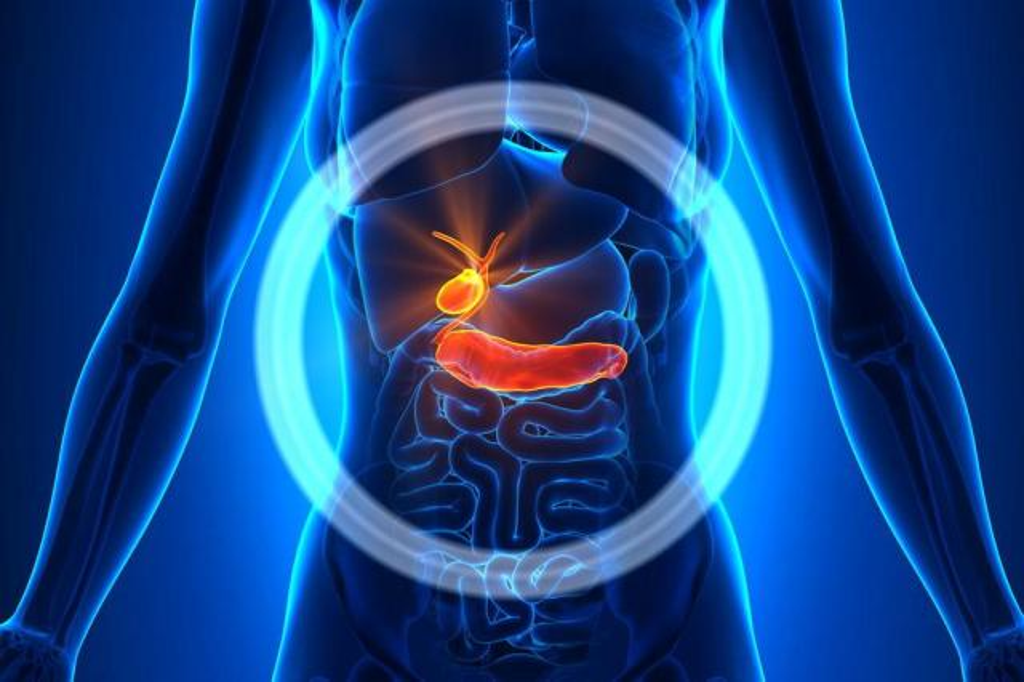 Testado em Porto Alegre, novo remédio para câncer de pâncreas é aprovado nos EUA Shutterstock/Shutterstock