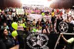 Em meio a protestos, deputados derrubam projeto que proíbe sacrifício de animais