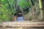 Parque Mato Sartori, em Caxias, reabre com biblioteca e trilhas revitalizadas Rafael Lopes/Divulgação