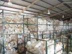 Sistema incentiva destinação correta de embalagens de agrotóxicos por meio de integração e ações itinerantes ZH/