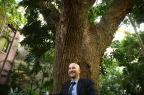 Conheça bons motivos para manter as árvores em pé Félix Zucco/Agencia RBS