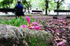 Sem chuva, semana começa fria no Rio Grande do Sul Ricardo Duarte/Agencia RBS